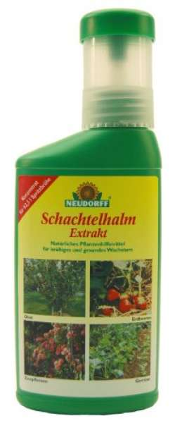 Schachtelhalm Extrakt 250ml