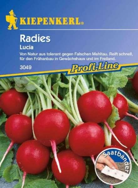 Kiepenkerl Radies Lucia Saatband