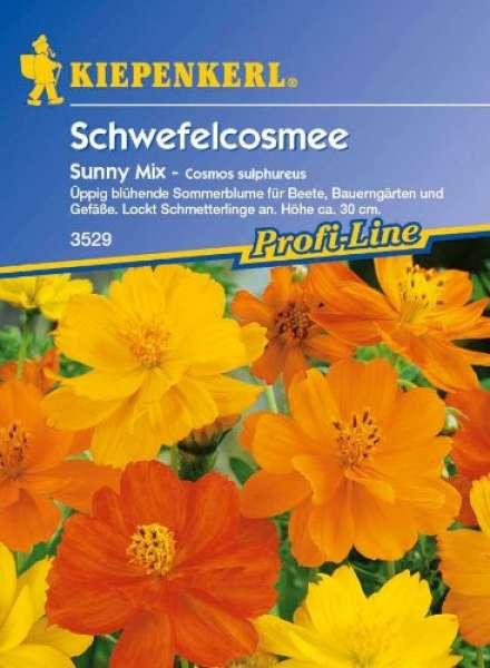 Kiepenkerl Schmuckkörbchen Sunny Mix