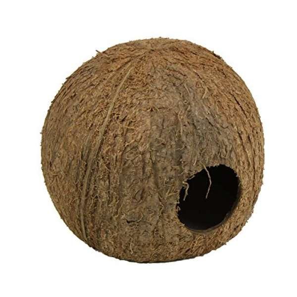JBL Cocos Cava Large 3/4