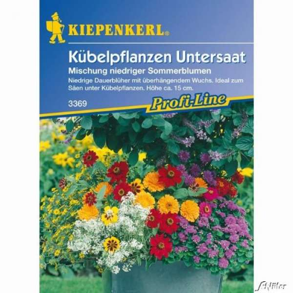 Kiepenkerl Kübelpflanzenuntersaat Mix