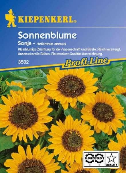 Kiepenkerl Sonnenblume Sonja