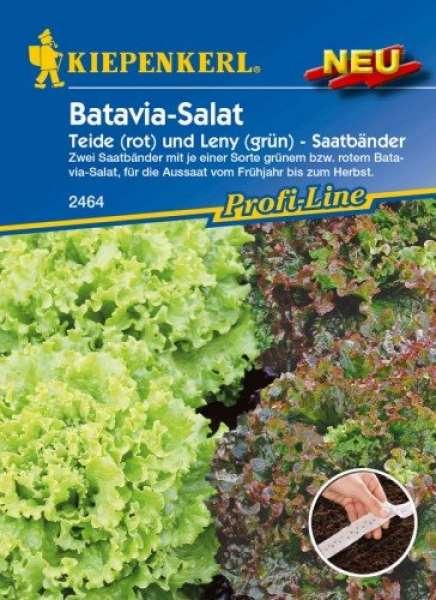 Kiepenkerl Batavia Salat Saatband rot + grün