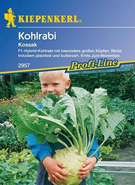 Kohlrabi Kossak F1