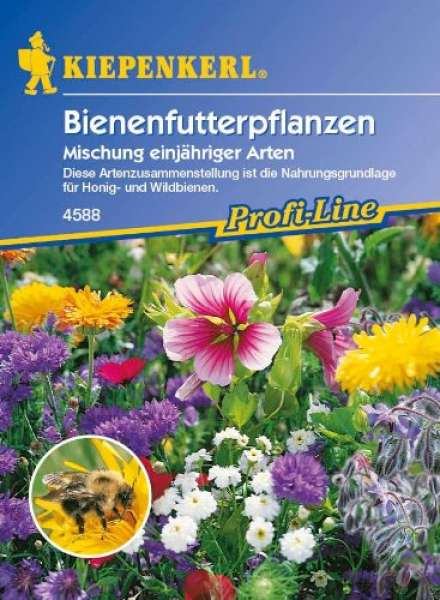 Bienenfutter Pflanzen NE
