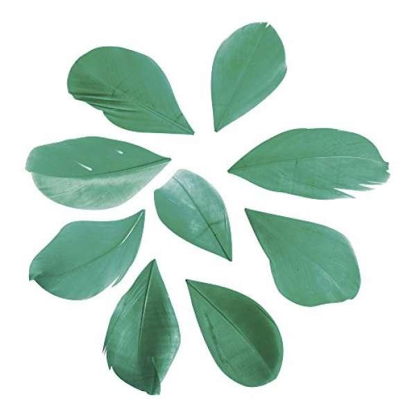 Federn geschnitten piniengrün 5-6cm