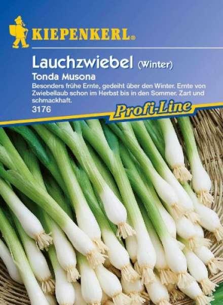 Winterlauchzw.Tonda Musona