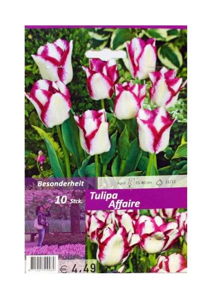Tulipa Affaire