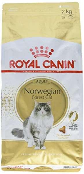 Royal Canin Norwegische Waldkatze