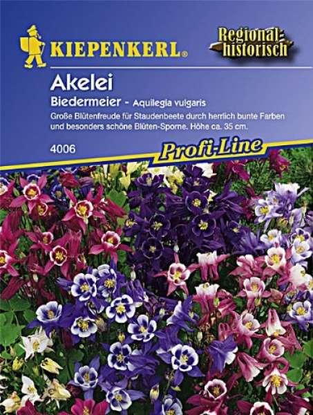 Kiepenkerl Akelei Biedermeier - Aquilegia vulgaris