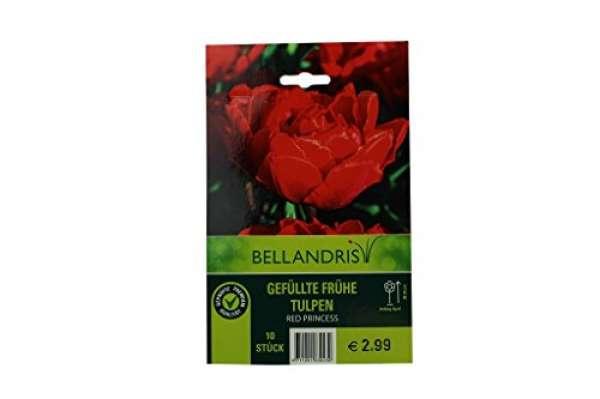 Bellandris Gefüllte Frühe Tulpen rot