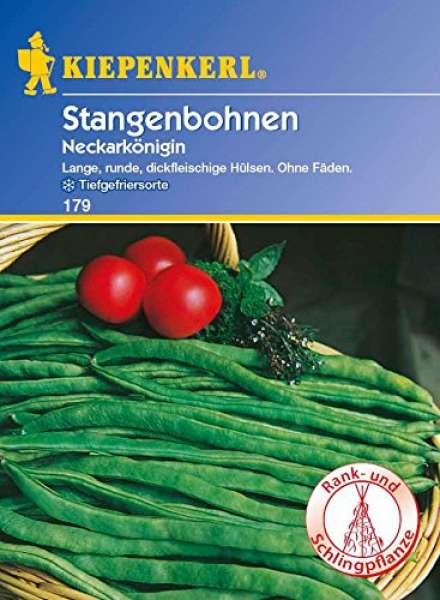 Kiepenkerl Stangenbohnen Neckarkönigin