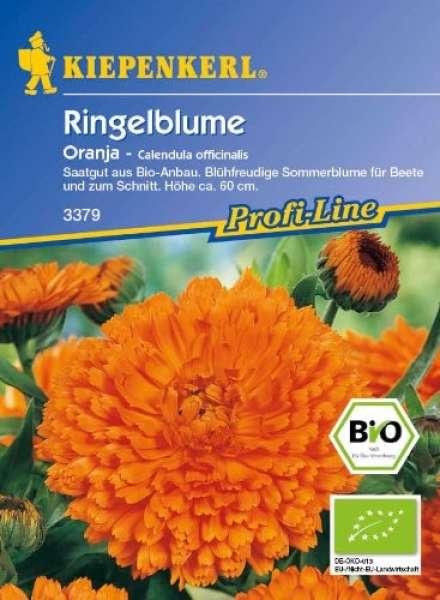 Kiepenkerl Bio-Ringelblume
