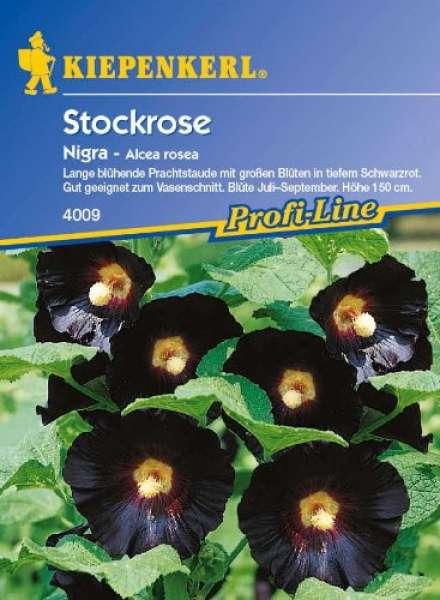 Kiepenkerl Stockrose Alcea Nigra