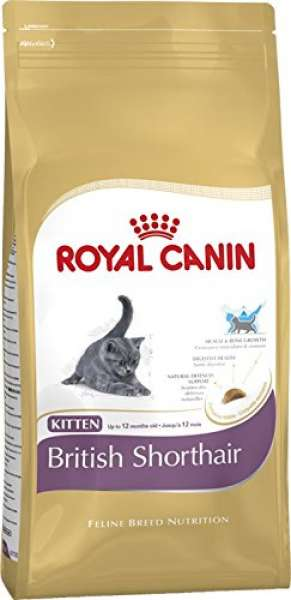 Feline BN Tr 400g Kitten BritShorthair