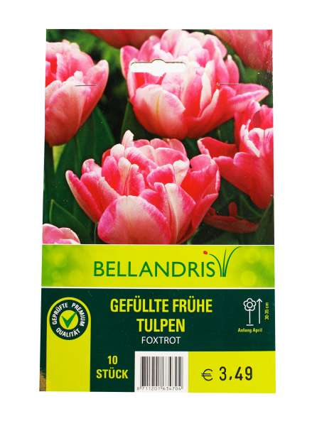 Bellandris Gefüllte Frühe Tulpen