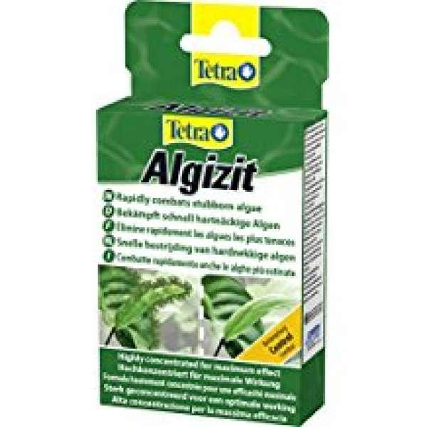 TE Algizit 10 Tabletten